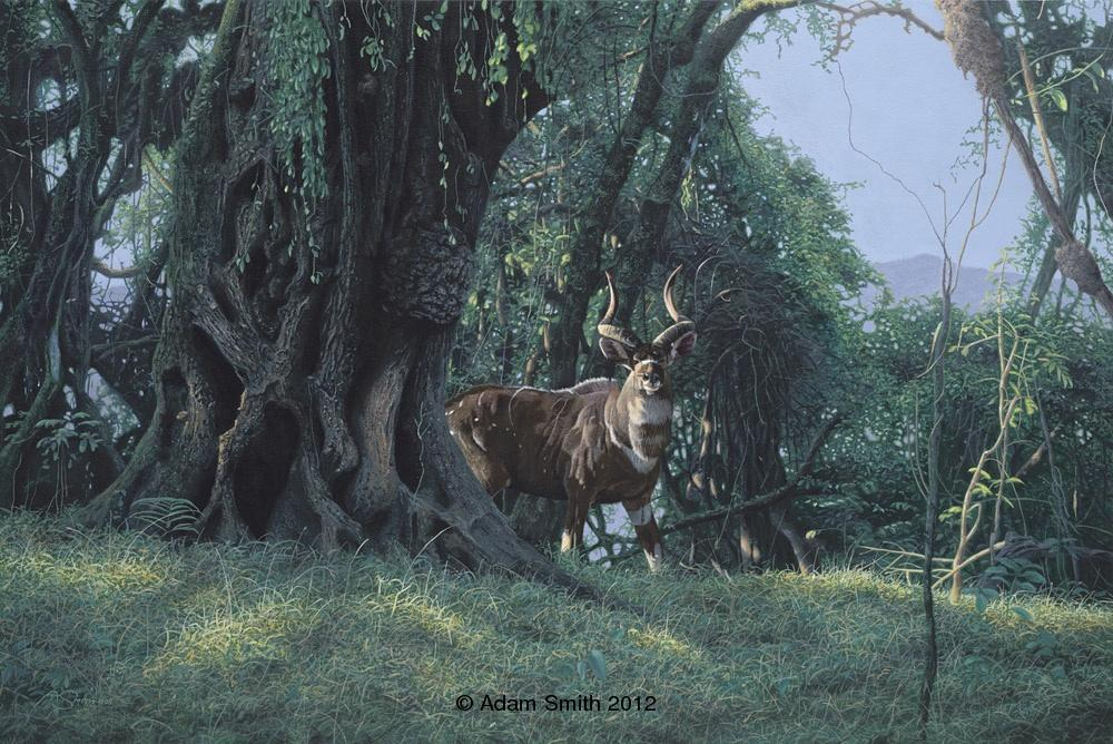 """Mountain Nyala"" - Acrylic - 16"" x 24"" - Sold Mountain Nyala African artist Adam Smith Adam Smith Artist"