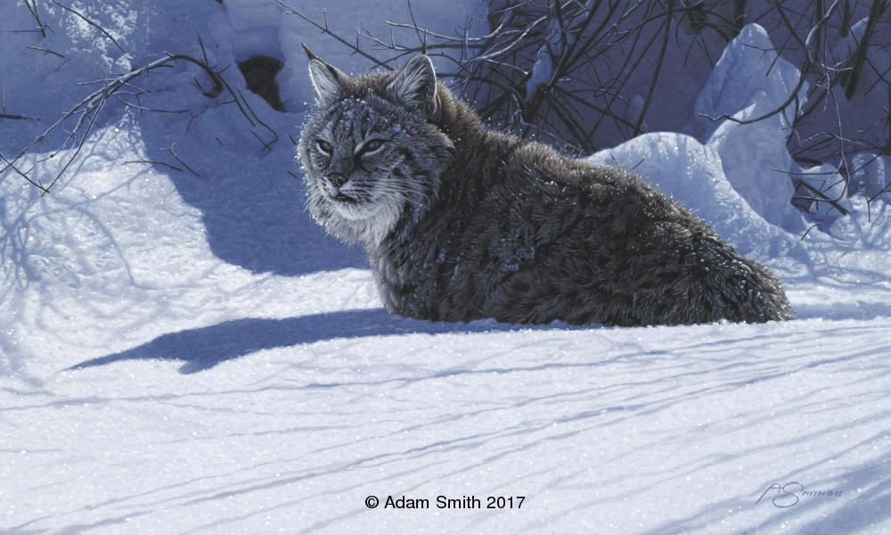 """Winter Shadows"" - Acrylic - 12"" x 20"" - Sold<br><a href=""http://www.nationalcowboymuseum.org"" target=""_blank"">Available Through: Small Works, Great Wonders</a> Winter Shadows Originals by Adam Smith Adam Smith Paintings"