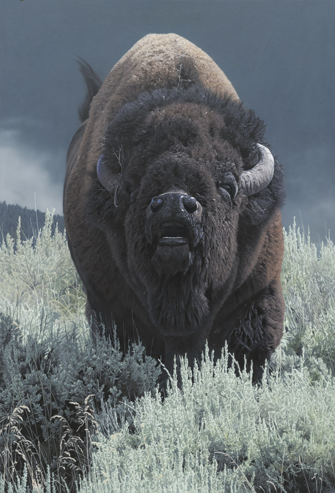"""Storming In"" American Bison 35"" x 24"" Acrylic Painting by Adam Smith"