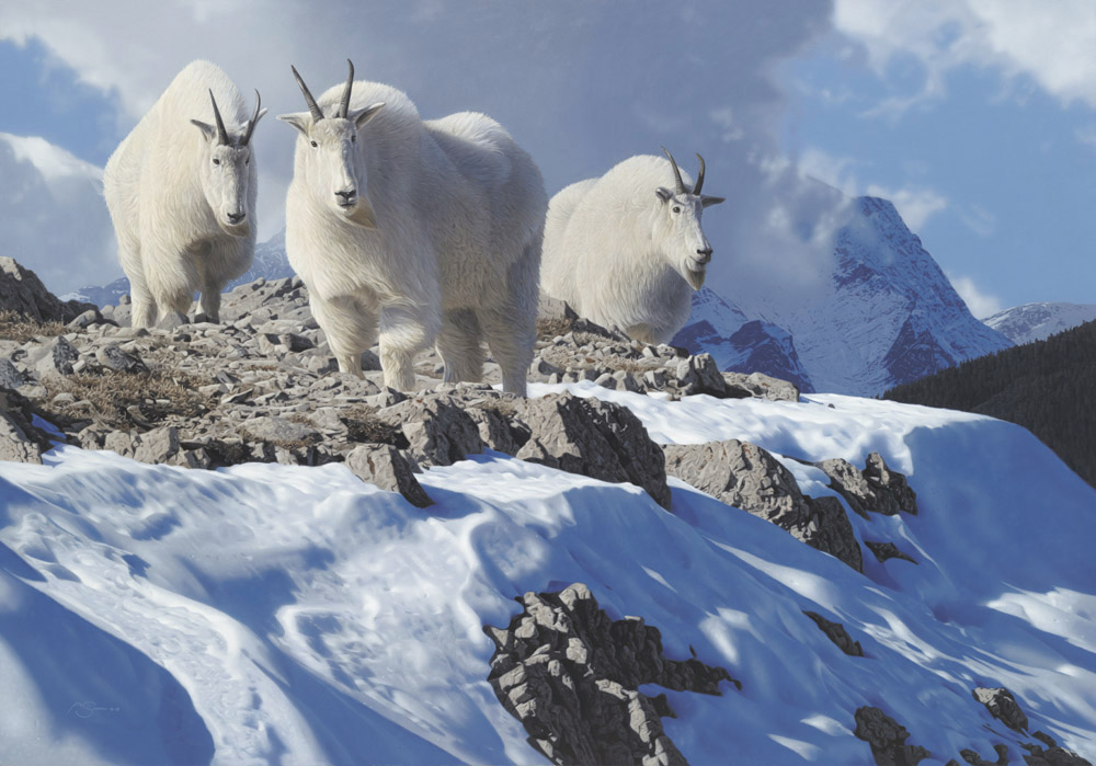 "Mountain Goats: ""Onset of Winter"" Acrylic 28""x40"""