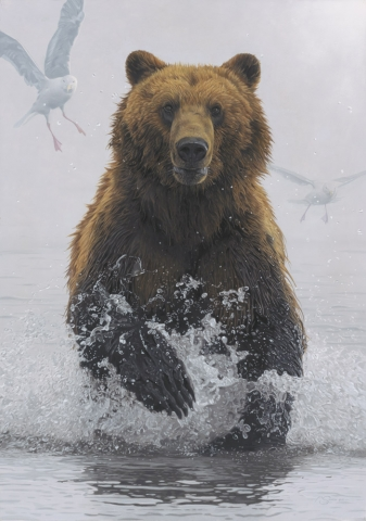 """Incoming"" - Grizzly Bear by Adam Smith Original Acrylic 27"" x 19"" Available at"