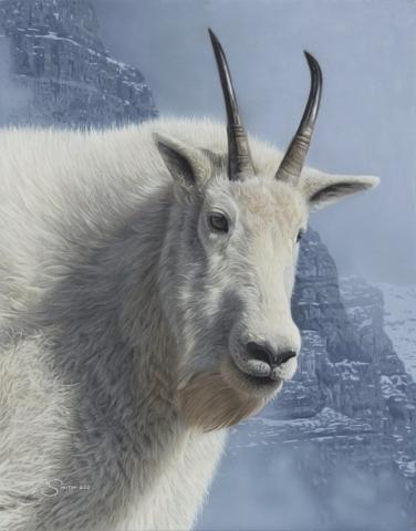 """Mountain Monarch"" Mountain Goat by Adam Smith 14"" x 11"" Original Acrylic (ND_2252)"