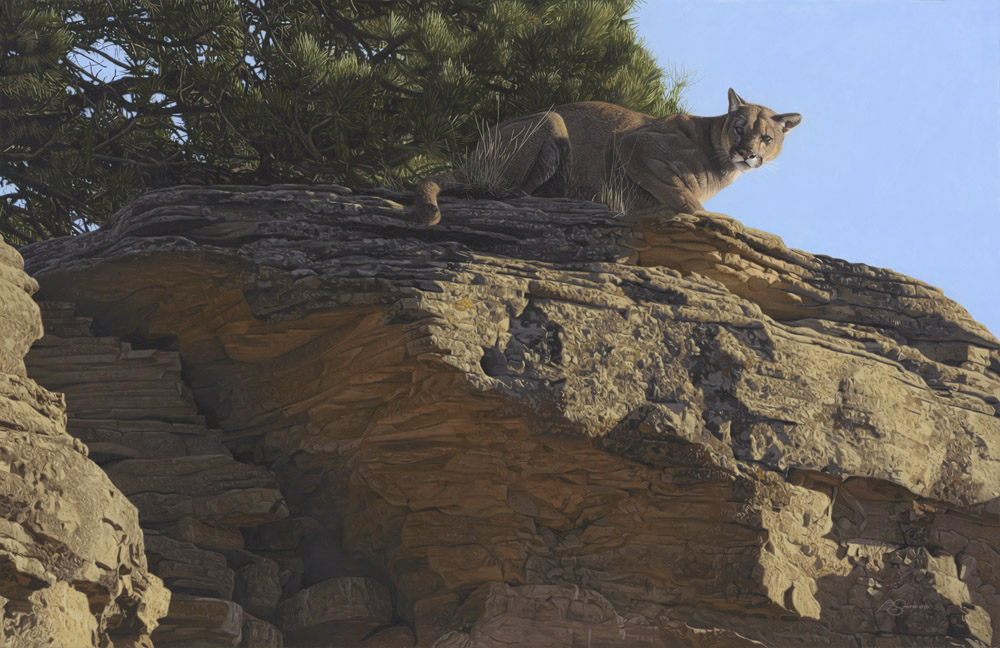 """The Surveyor"" Mountain Lion by Adam Smith 24"" x 37"" Original Acrylic (ND_2374)"