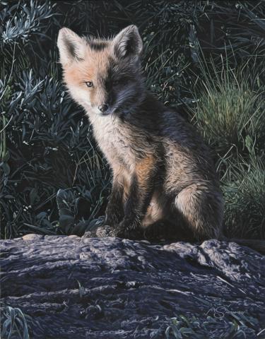 """""""Morning Sun"""" - Fox 14"""" x 11"""" Original Acrylic by Adam Smith"""